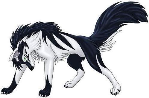Loup Manga Noir Blanc