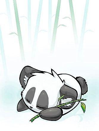 bb panda endormi sur le ventre