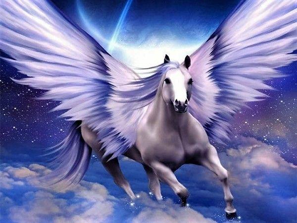 image cheval avec des ailes